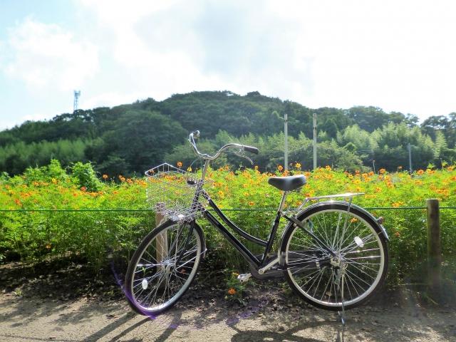少し自転車に乗ってみた感想
